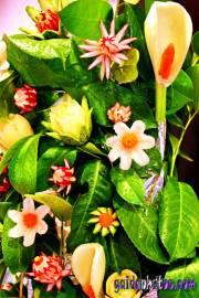Kommunion, konfirmation, Blüte, Gemüse