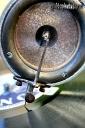grammophon-nadel