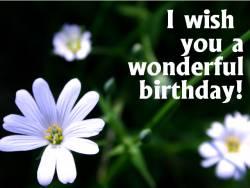 Geburtstagskarte Blüte weiß Englisch