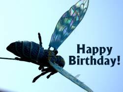 Geburtstagskarte Fliege Englisch