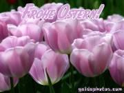Kostenlose Ostergrusskarten Tulpe rose