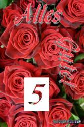 5. Hochzeitstag: Grußkarten Holzhochzeit