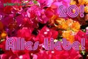 20 Bougainville