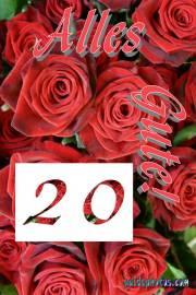20 Hochzeitstag: Karten  rote Rosen
