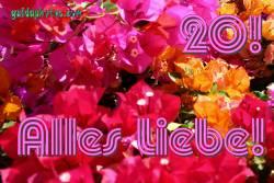 20 Hochzeitstag: Karten  Bougainville