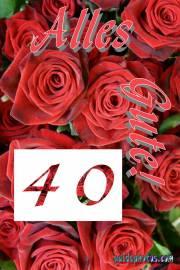 Gratis Grusskarten zum 40. Hochzeitstag rote Rosen