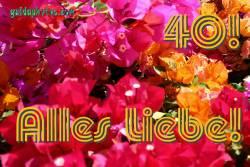 Gratis Grusskarten zum 40. Hochzeitstag Bougainville
