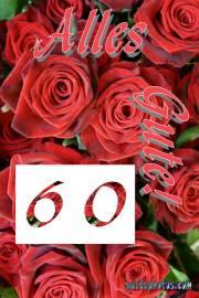 Zum 60 Hochzeitstag Glückwünsche  rote Rosen