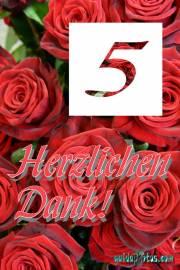 Danke  5. rote Rosen