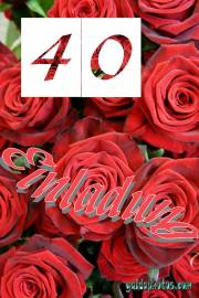 Einladungskarten zum 40. Hochzeitstag rote Rosen