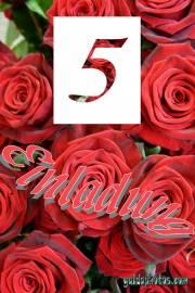 Einladungskarten 5. Hochzeitstag rote Rosen