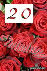 Einladung  20. rote Rosen