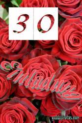 Einladung  30. rote Rosen