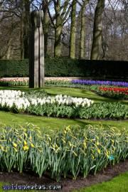 Osterbilder, Osterblumen, Frühlingsblumen,
