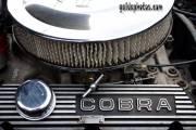 Cobra, Motor, Auto, Technik