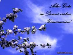 Kommunionkarte, Kirschblüte
