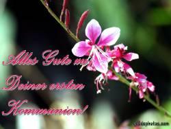 Kommunionkarte, Blüte
