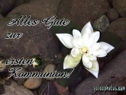 Kommunionkarte, Lotusblüte