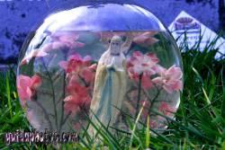 Kommunion, konfirmation, Goldfischglas, Hl. maria