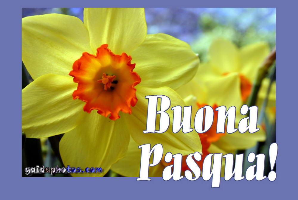 Kostenlose osterkarten auf italienisch - Gute besserung italienisch ...