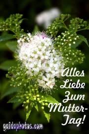 Muttertagskarte Blüte weiss
