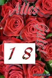 18. Geburtstag: Rose rot