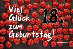 18. Geburtstag - Karte - Marienkäfer
