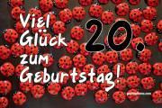20. Geburtstag Marienkäfer