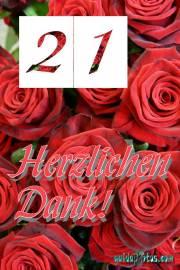 21. Geburtstag Danksagung Rose
