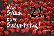 21. Geburtstag Karte Marienkäfer