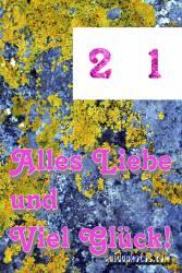 21. Stein und Moos