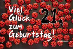 21. Geburtstag  Marienkäfer