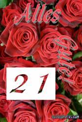 Karte 21. Geburtstag Rose