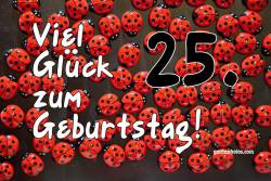 25. Geburtstag Marienkäfer
