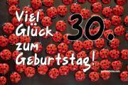 30. Geburtstag Karte Marienkäfer