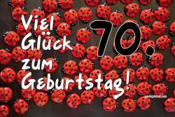 70. Geburtstag Marienkäfer