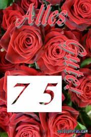 75 Geburtstag Karten zum Ausdrucken