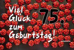 75. Geburtstag Marienkäfer