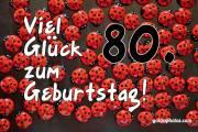 80. Geburtstag Marienkäfer
