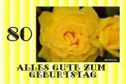 80 Geburtstag Rose gelb
