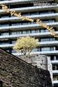 hochhaus kirschbaum