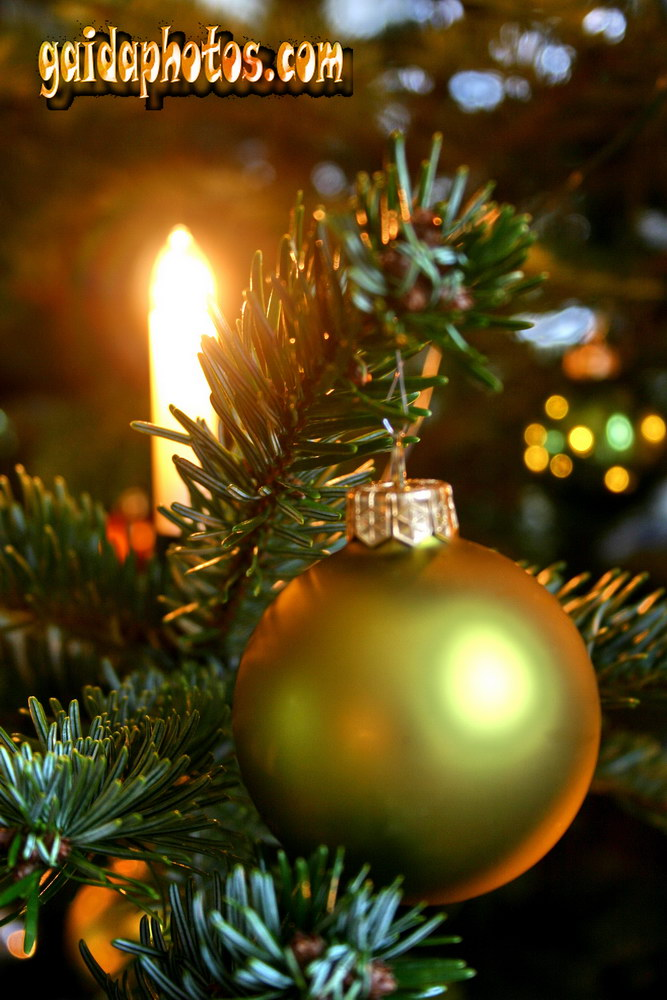weihnachtskarten weihnachtsbaum dekorationkostenlose. Black Bedroom Furniture Sets. Home Design Ideas